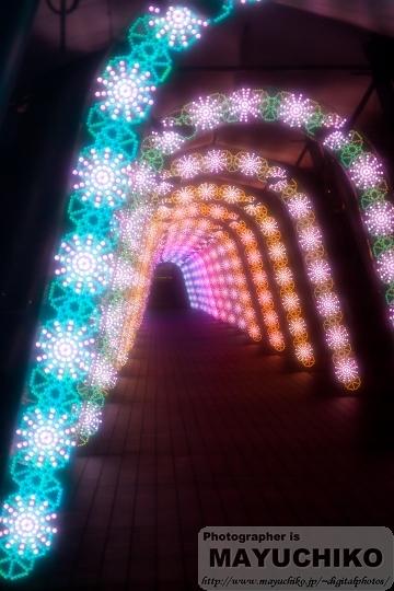 イルミのトンネル